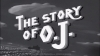 Jay-Z' The Story of O.J.